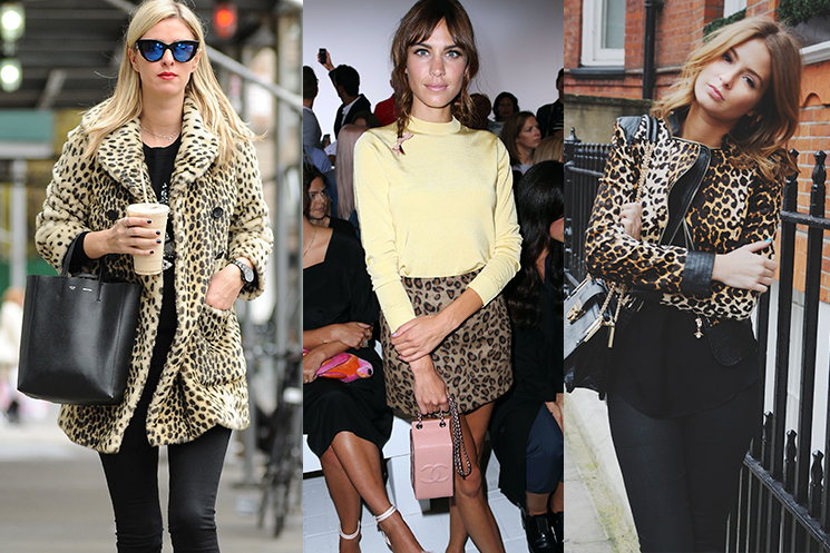 Give your wardrobe some edge with our fabulous range of leopard print clothing at George.com