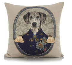 Furnish your home with some stylish cushions at George.com